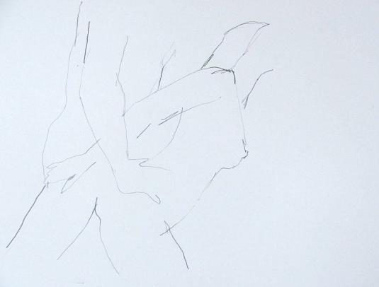 Nieuw: erotische tekeningen van Mart Franken
